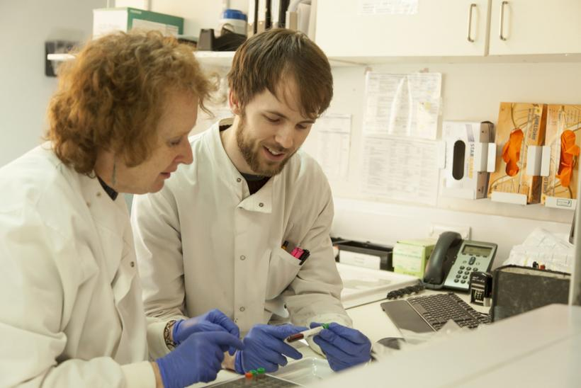 Lab technicians looking over a blood sample